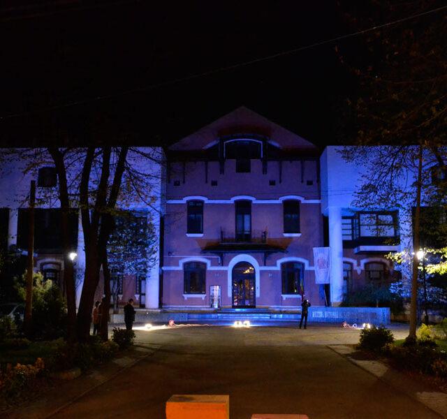 Noaptea-albastra-a-autismului_2017_muzeul-satului-2