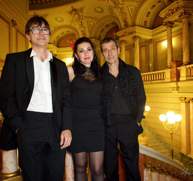 Ramona-Horvath-Trio-Ateneu_2015_28